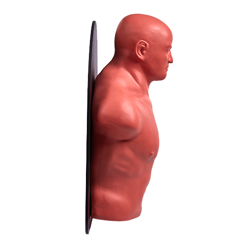Wall Mounted Punching Dummy Skin