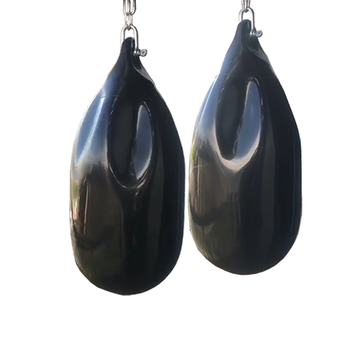 Tailisi Black Color Aqua traing bag